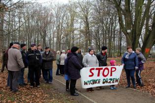 Galeria Mieszkańcy protestują przeciw wycince