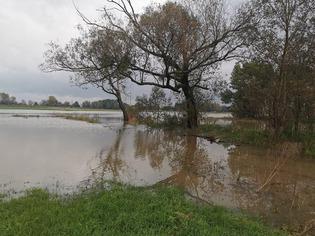 Galeria powodź