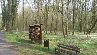 Galeria Rewaloryzacja parku